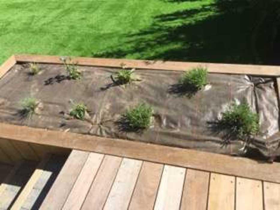 Création d''un jardin et aménagement d''un espace détente en balcon - (22) img0283